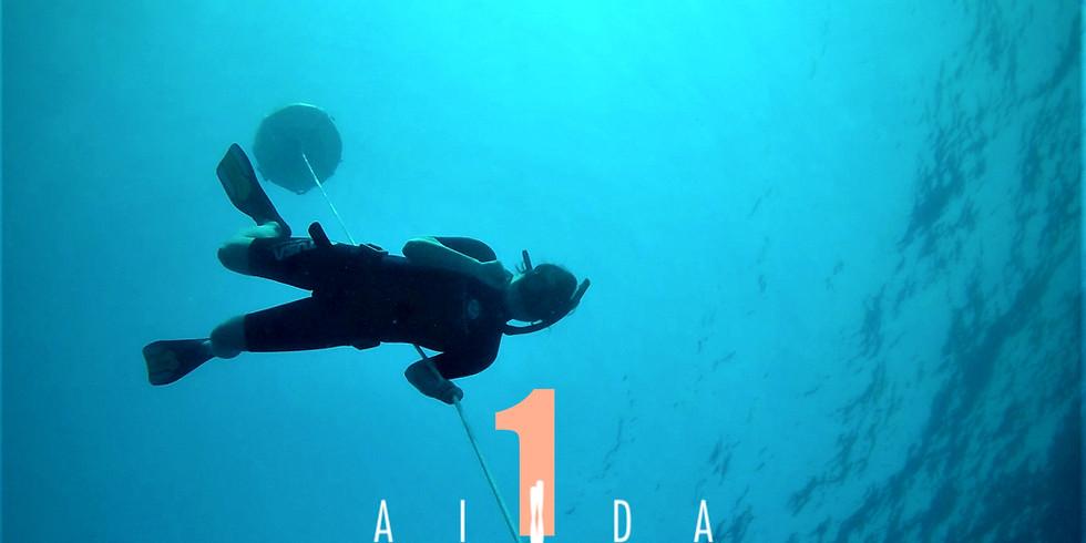 AIDA 1 FREEDIVING COURSE - Sharm el Sheikh