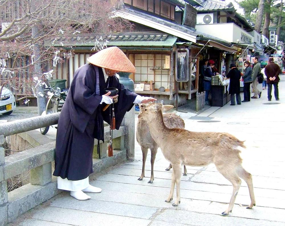 les moines font acte de mendicité pour permettre à chacun d'améliorer leur karma