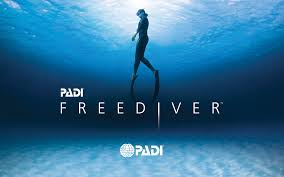 deep zen can teach Padi freediver education system