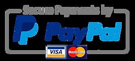 paypal-logo-deepzen.png