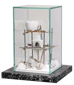 Dental Art Glass Case 1