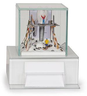 Dental Art Glass Case 3