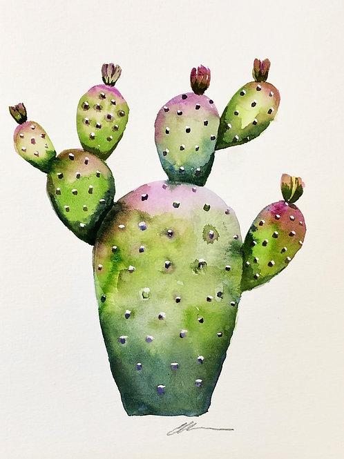 Cactus no. 1 Original watercolor painting