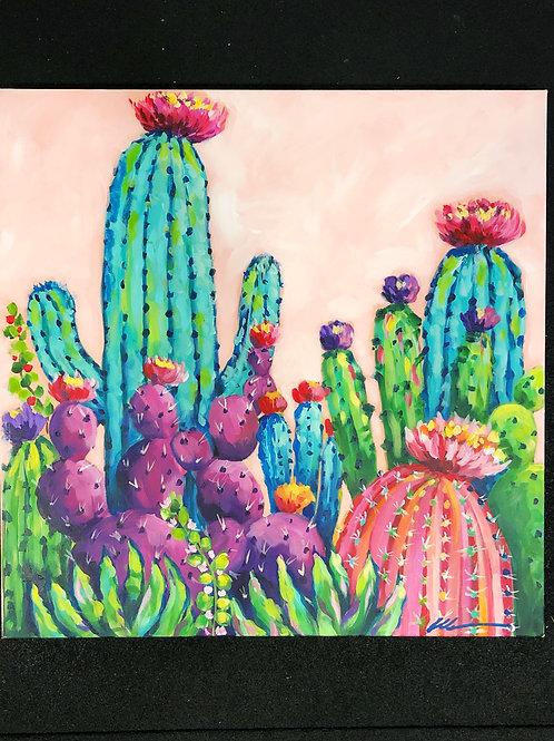 Big Cactus garden