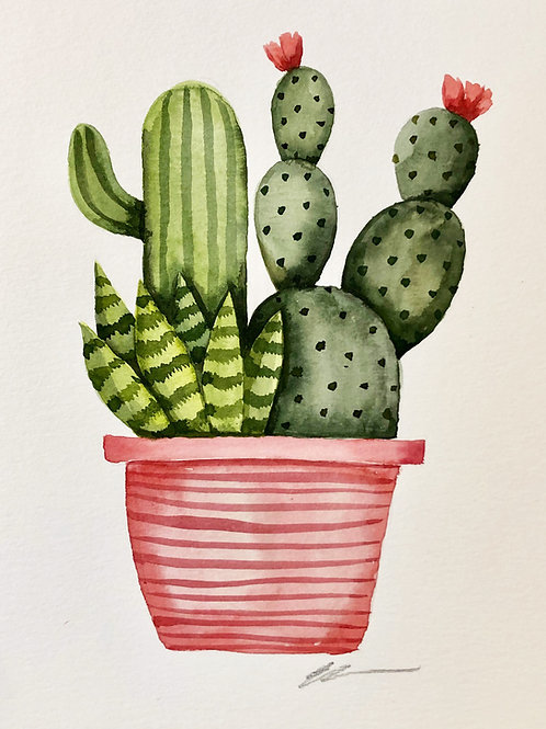 Cactus garden in planter Original Watercolor painting