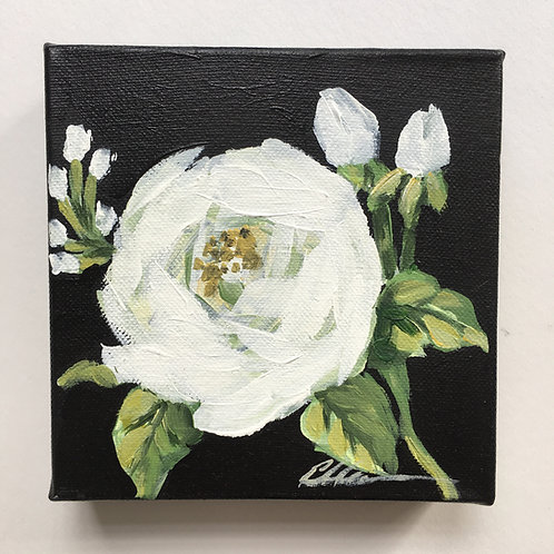 White rose small painting #2