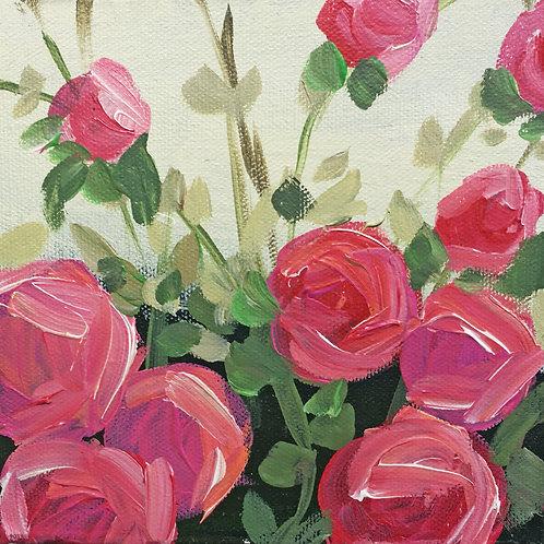 Mini sweet bright rose