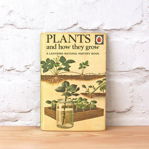 Plants And How They Grow - A Ladybird Natural History Book (1973)
