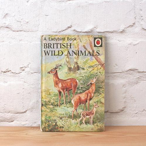 A Ladybird Book of British Wild Animals (circa 1974)