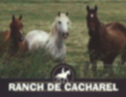 Ranch de Cacharel