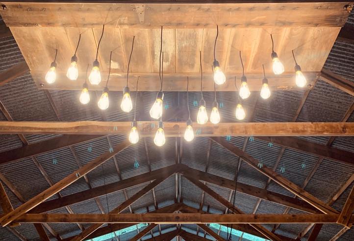 3 edison bulb light fixtures on dimmer