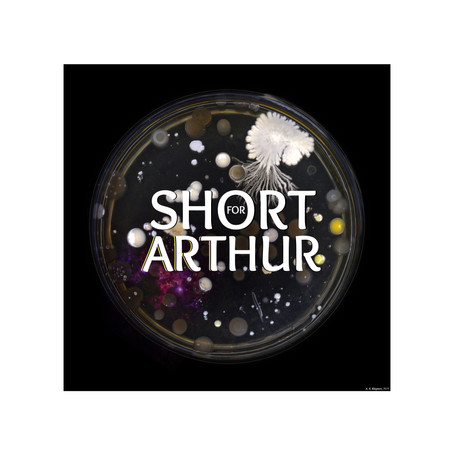 Check out Planting Seeds by Short For Arthur