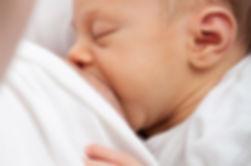 Newborn baby is successfully breastfeeding.