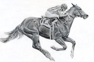 Black & White Racehorse 12