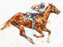 Racehorse #1