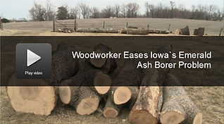 Aronson Woodworks Ash Tree Salvage Emerald Ash Borer Video