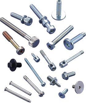 Special Precision Screws and Bolts