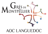 Logo GdM NG 2016 - TRANSAPRENT.png