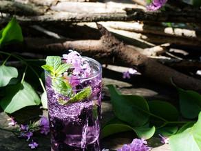 Blueberry Lilac Gin Fizz