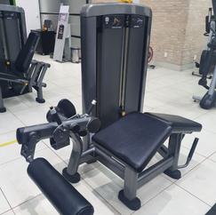 Mesa Flexora Life Fitness.png