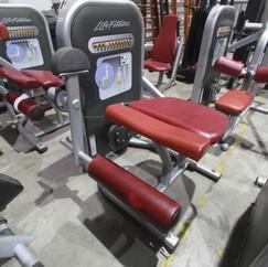 Cadeira Extensora Life Fitness