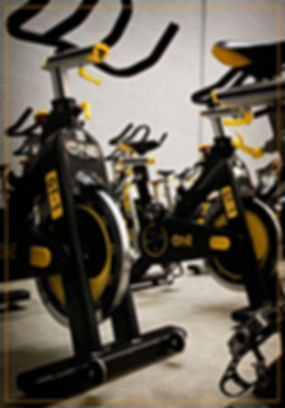 Compra e venda de Equipamentos novos e semi-novos de ginástica para academias. Temos o mais variado e rotativo estoque de São Paulo com produtos sendo repostos todos os dias. Venha nos visitar, ligue 11 4702-0823