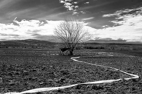 The Unexist Road