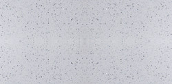 CT1101-edison