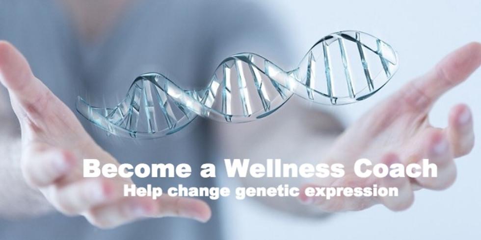 Become a Wellness Coach Webinar
