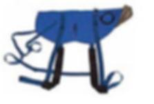 IMAET Horse Blanket