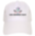 SmartHealth, Inc. white hat
