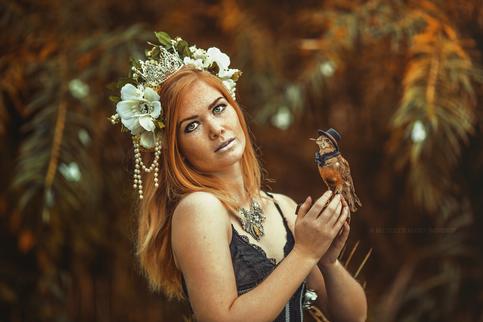 Fairytailor Headpiece og Fugl