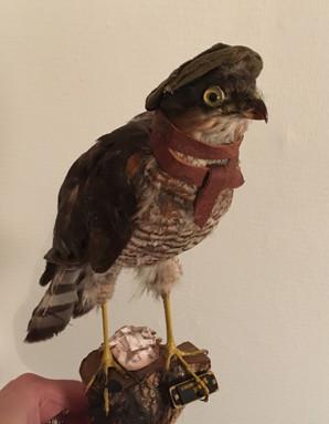 Specialbestilt fugl fra en kone til hendes mand. Jeg implementerede en masse personlige træk, og han blev meget glad.