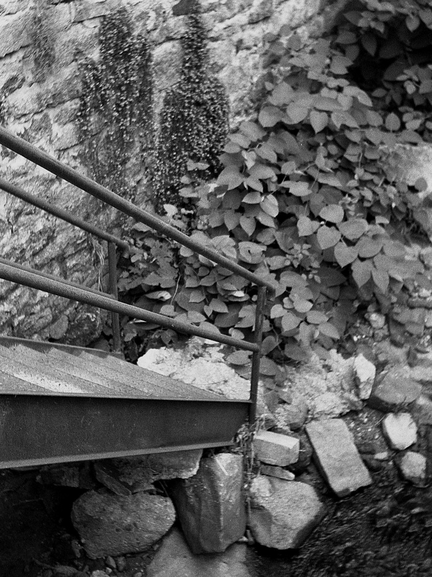 Stairs in Ellicott City