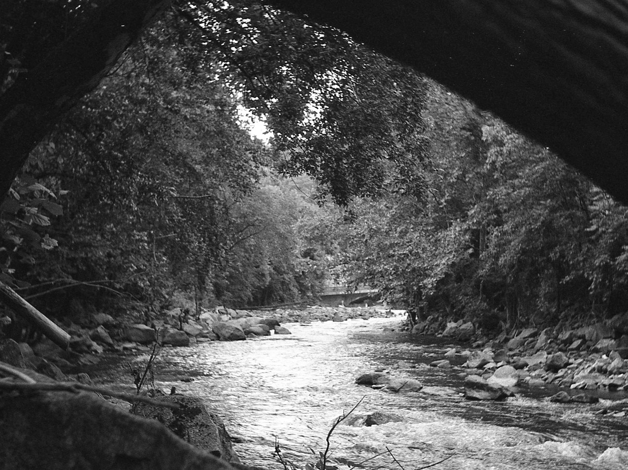 View of the Patapsco River