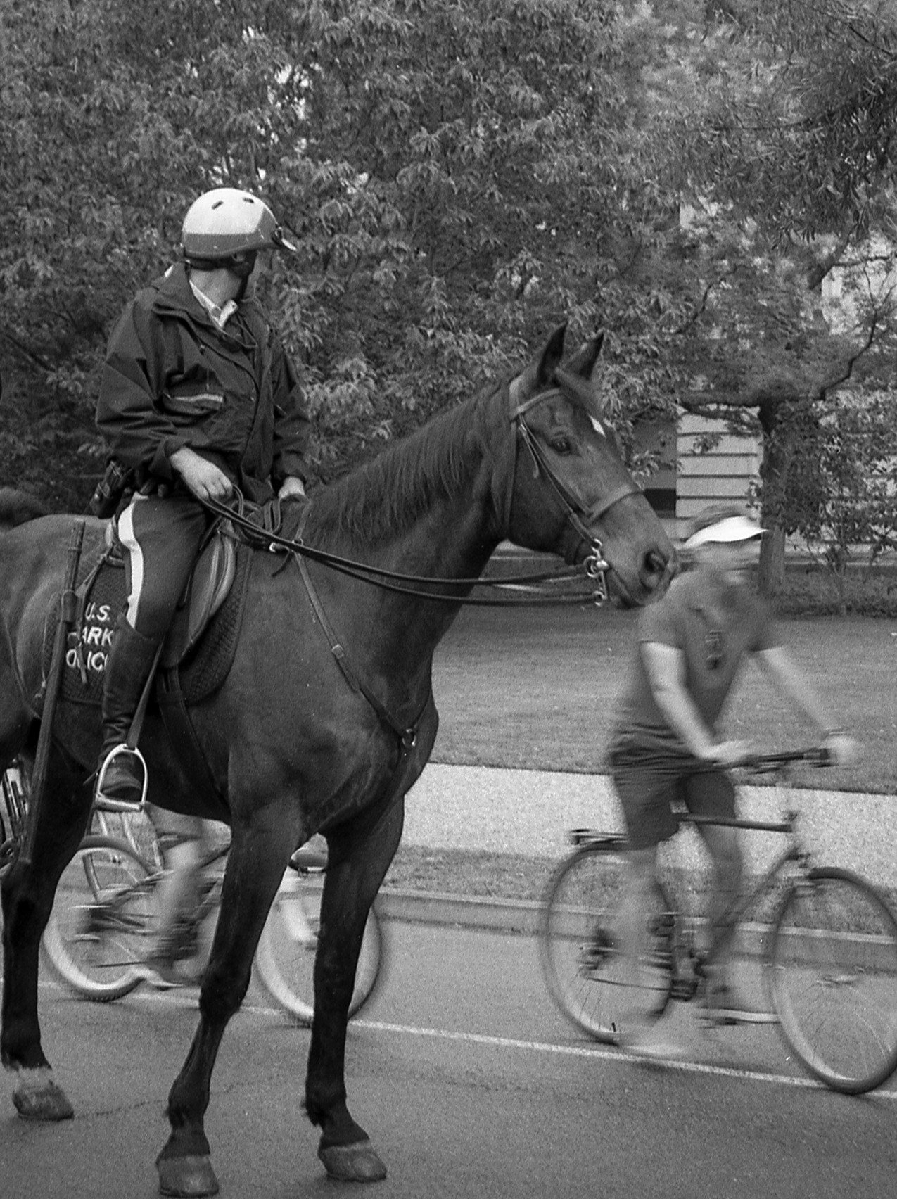 Mounted Police.  Washington, DC.
