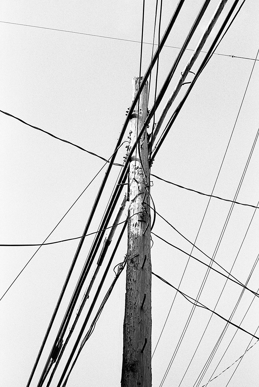 Telephone pole in Ellicott City, Maryland