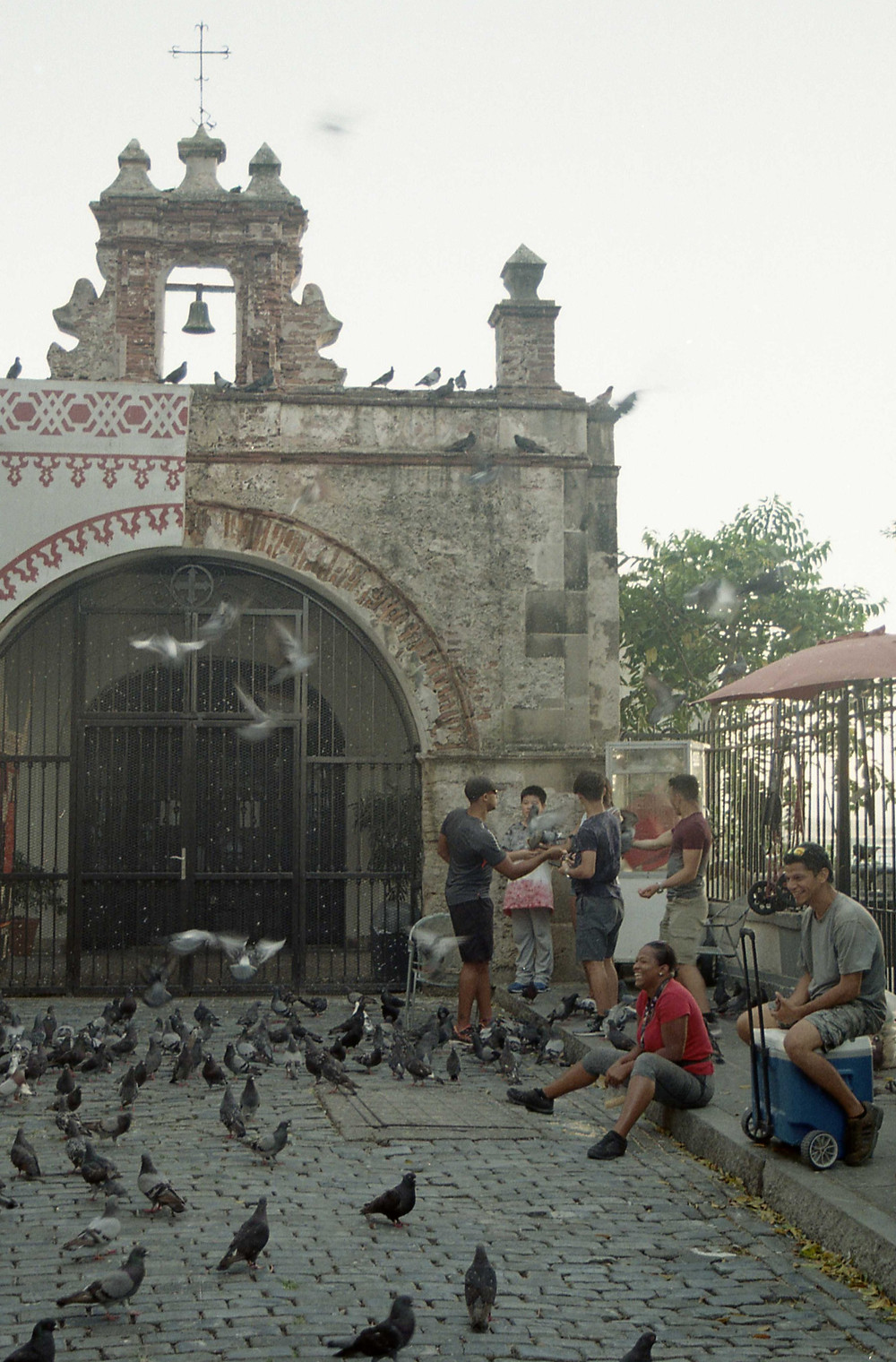 Lady with pigeons in San Juan Puerto Rico