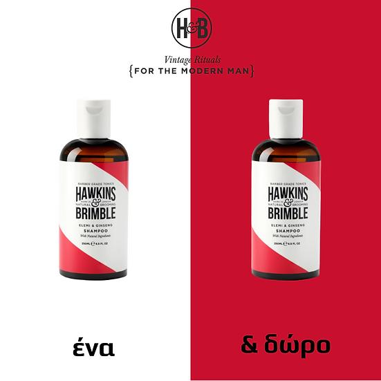 hair shampoo + hair shampoo δώρο