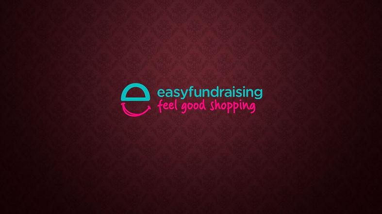 Easy Fundraising final.JPG