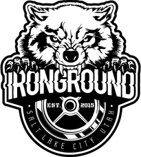 Envision Ironground Logo Design