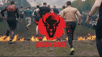 bizon logo 2019.jpg