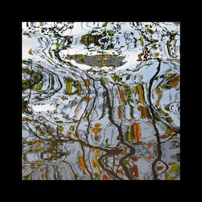pitture d'autunno2-50X50 2016 tela.jpg