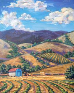 California Hills 2.jpg