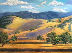 California Hills 1