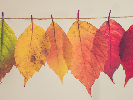 Self Care Practices for Autumn