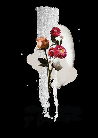 SilverLinings2-01-01.png