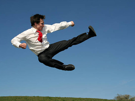 האם אמנויות הלחימה יכולות ללמד אותנו ניהול?