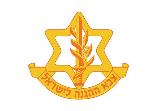 """צבא ההגנה לישראל - מינהל גיוס - מד""""נים"""