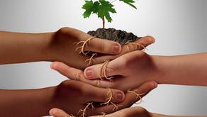 איך נגביר את כוחו של ארגון השירות הקהילתי